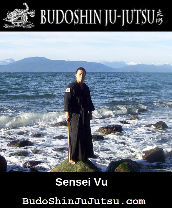 BudoShinJuJutsu.com Sensei Vu