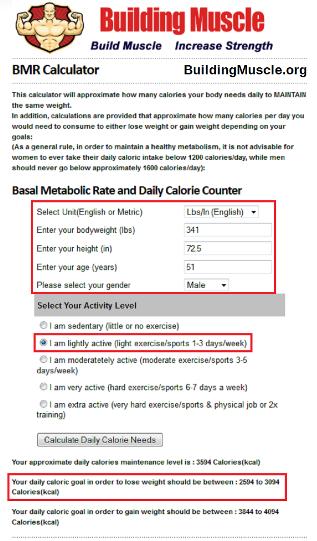 BuildingMuscle.org Basal Metabolic Rate Calculator for PWL 20140116c