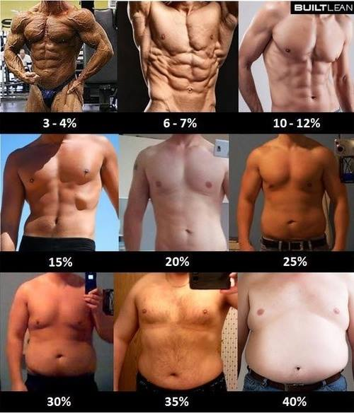 Three to Fourty Percent Body Fat